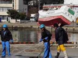 施設被害はなく、再開に向けて清掃活動が行われた塩釜市魚市場=19日午前9時30分、塩釜市新浜町
